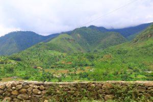 Dschungel, Reisfelder und Berge